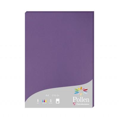 Papier Couleur A4 210 G Paquet de 25 Feuilles Imprimantes Laser et Jet d'encre