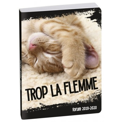Agenda Scolaire 2019-2020 Journalier Forum Funny Pets chat