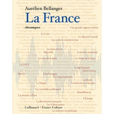 La France, chroniques - Aurélien Bellanger