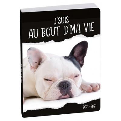 Agenda Scolaire 2020-2021 Journalier Forum Funny Pets chien 18445E