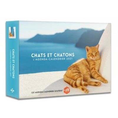 L'agenda-calendrier chats et chatons -  Hugo Image