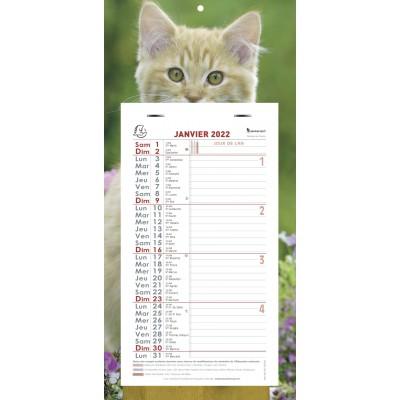 Calendrier mensuel Chat Feuillets détachables sur plaque cartonnée 16 x 33 cm